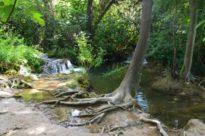 izlet np krka 6 Nacionalni park Krka